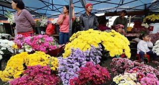 pasar bunga, berastagi